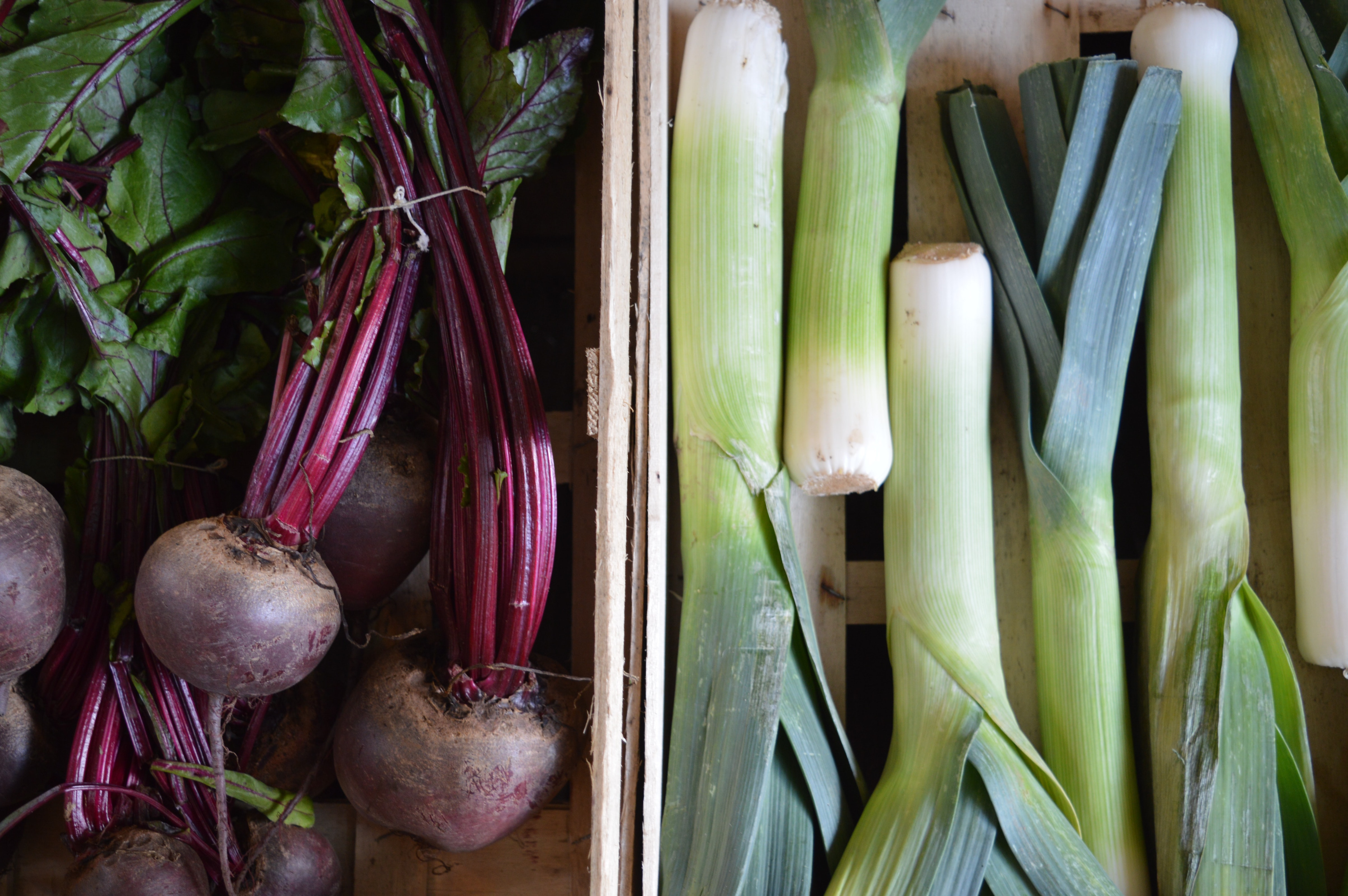 leeks and red onions